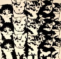 FIFTEEN KITTENS